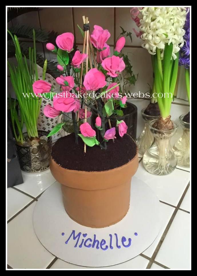 Sweet pea flower pot cake